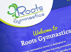 Image of Roots Gymnastics Academy site